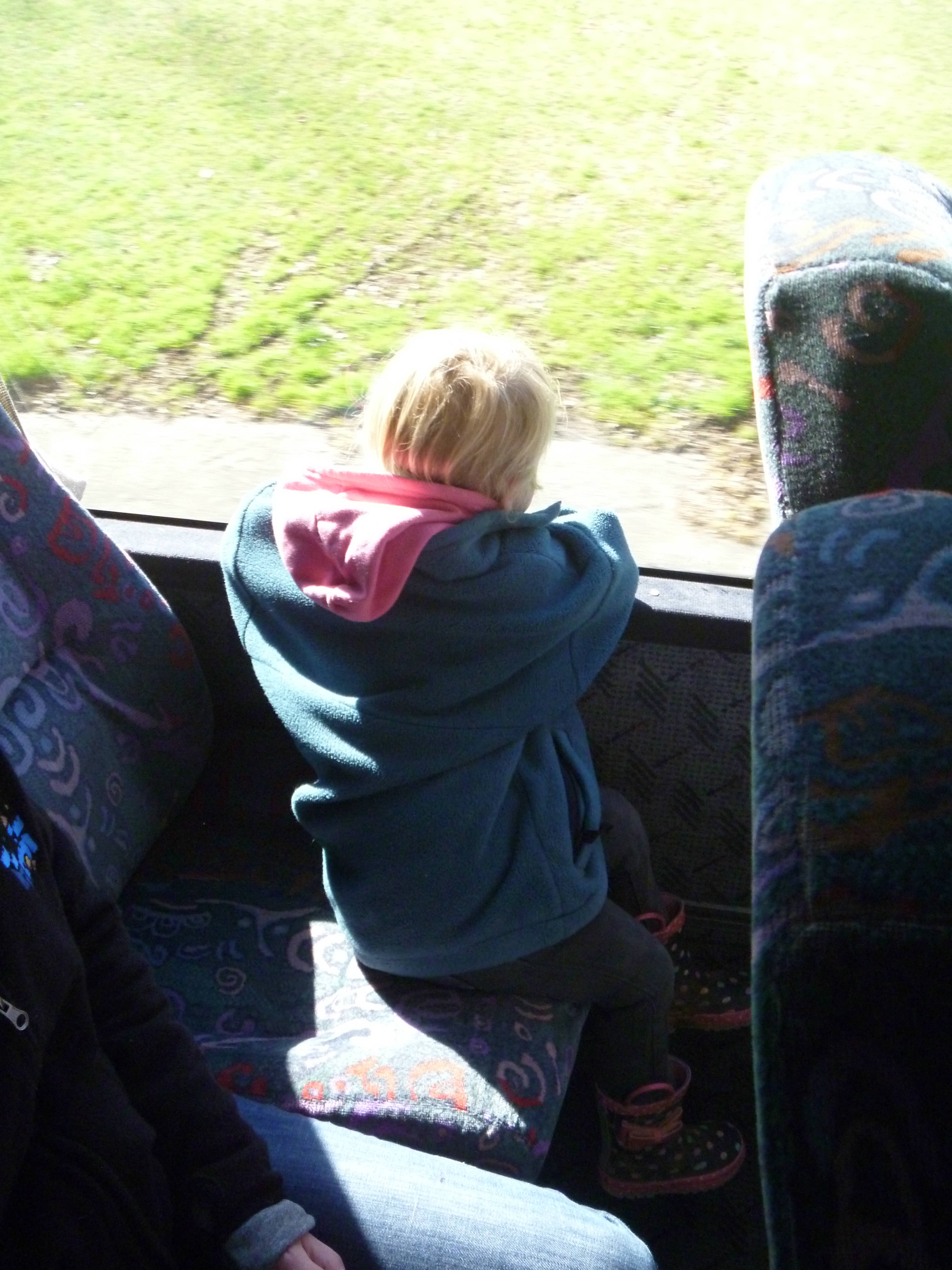 bus trip day 1.jpg - The Cambridge Early Learning Centre, childcare, ECE, and daycare located in Cambridge, Waikato, NZ